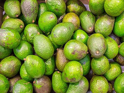 Lots of fresh avocados - perfect for our 100ml C60 Organic Avocado Oil